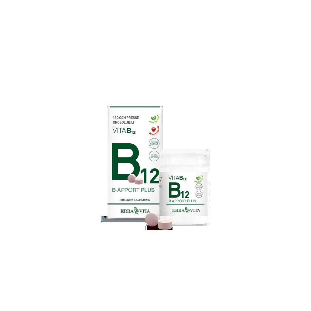 b-apport-vitamina-b12
